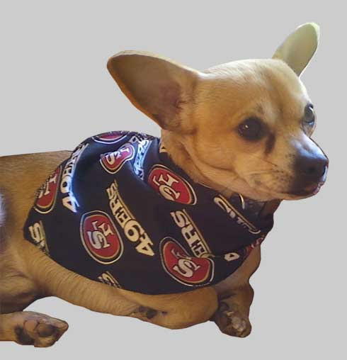 NFL Dog Apparel Accessories-NFL Dog Jerseys, NFL Dog Collars